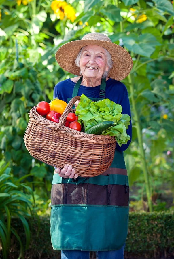 Hospice Care in Bethlehem PA: Tips for Trying New Things During National Fruit and Veggies Month